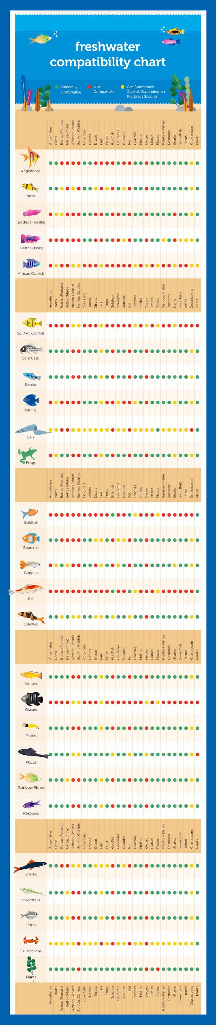Tabla de compatibilidad de los principales grupos de peces de acuario