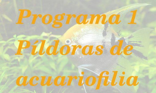 Podcast Píldoras de acuariofilia 1. Presentación